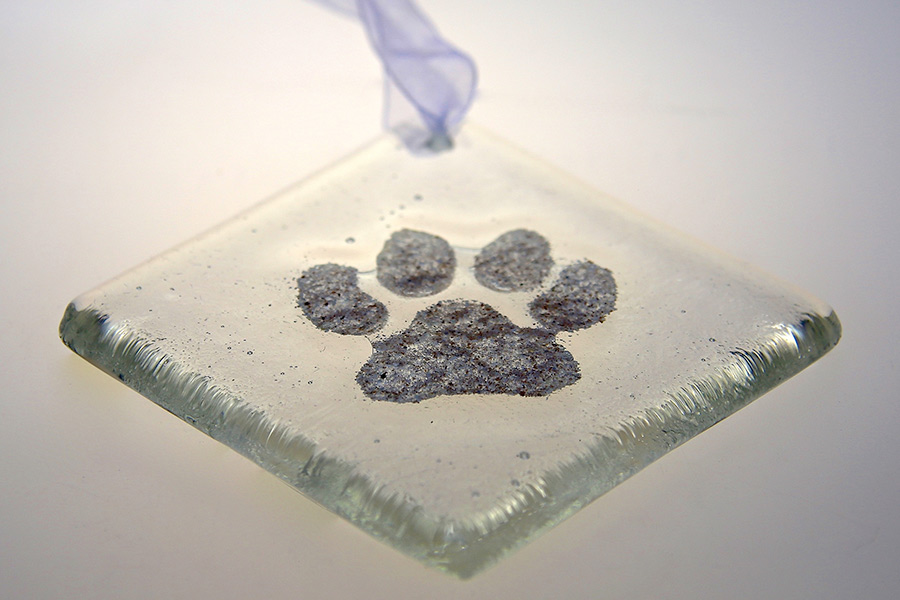 pawprint-square-900x600